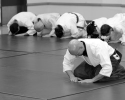 Bowing in at the beginning of martial arts class - Aikido