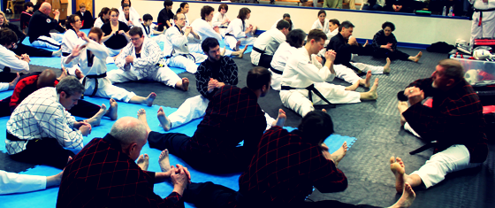 BlackBelts3